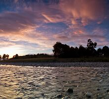 Trentham Blush by Ken Wright