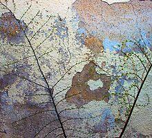a wall is peeling by Lynne Prestebak