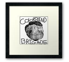 Colorblind Brigade Shirt Framed Print