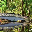 The Bridge and Reflection by TJ Baccari Photography