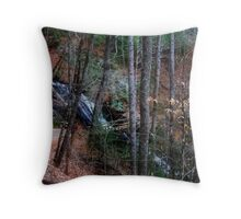 Juney Whank Falls Throw Pillow