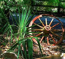 THE OLD WAGON WHEEL by Photography by TJ Baccari