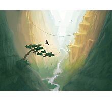 Valley of Birds Photographic Print
