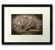 Beautiful bride Framed Print