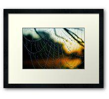 Fiery Web Framed Print