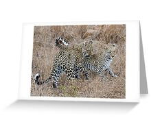 Mother and Daughter Leopards Greeting Card