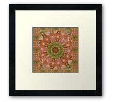 Girls Room- Cactus rose Framed Print