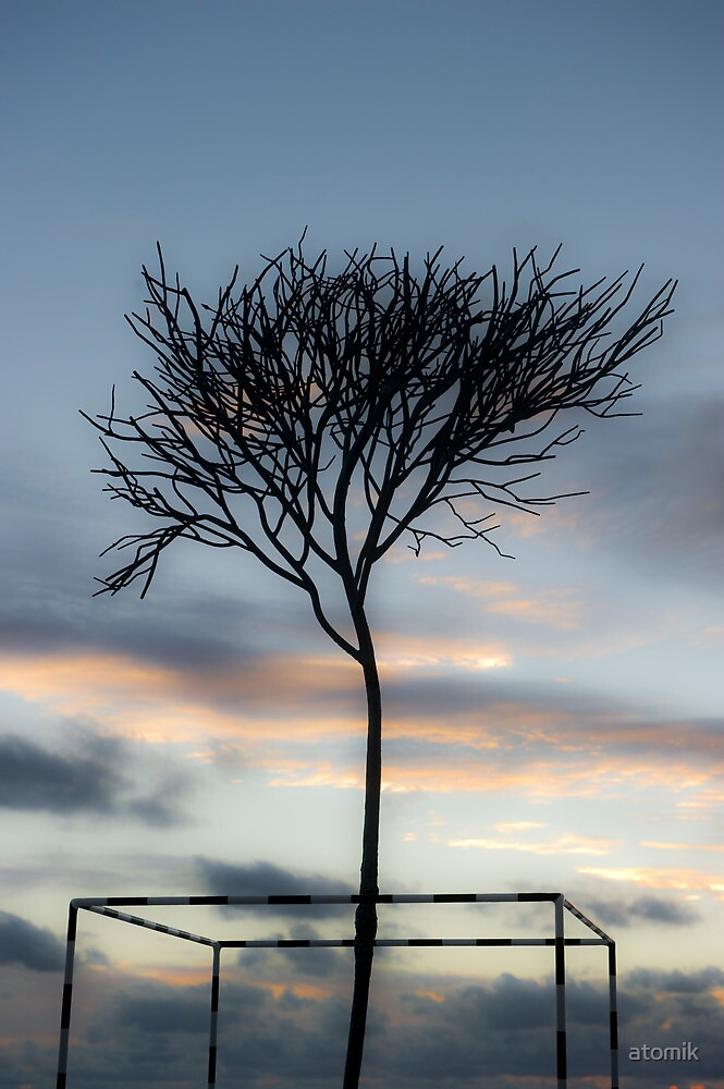 Fragile Tree by atomik