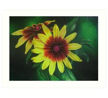 Yellow Rudbeckia Art Print