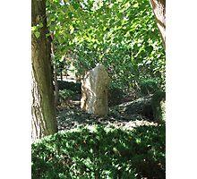Resting Stone Photographic Print