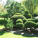Bonsai Garden (5902) by ScenerybyDesign