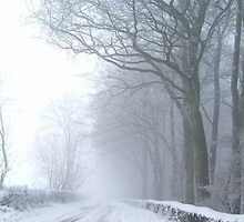 Winter in Whiteshill, Gloucestershire by Puddlejumper9
