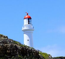 Aries Inlet Light House by john  Lenagan