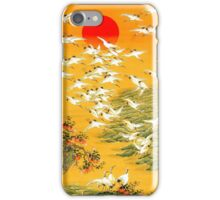 Asian Feeling iPhone Case/Skin