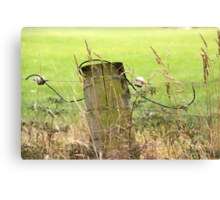 Electric Fence Post in Pasture Green Canvas Print
