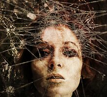 Trapped by Sybille Sterk