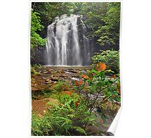Ellinjaa Falls Poster