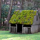 Little shed..... by DaveHrusecky