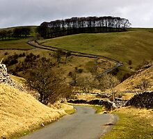 Coverdale Country Road by Trevor Kersley