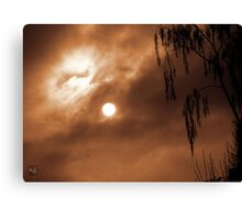 Something in the Air Canvas Print