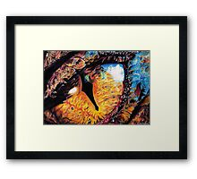 Smaug's Eye Framed Print