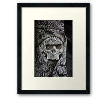 Ol' Tom Framed Print