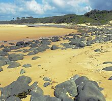 Saltwater Beach, NSW Mid North Coast. by Liz Worth