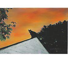 Spooky Cat Photographic Print