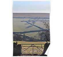 Sheeps Tor Bathing in the Autumn Sun Poster