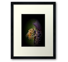 Lavendar and the Bee Framed Print