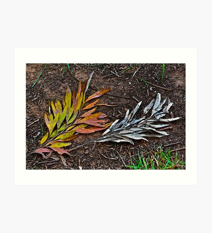 Multi-colored or monochrome? Art Print