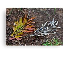 Multi-colored or monochrome? Metal Print