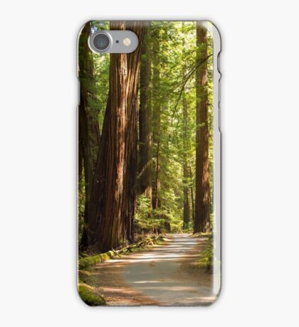 Road Through The Redwoods iPhone Case/Skin