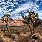 Red Rock by photo702