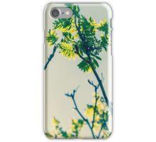 Beautiful nature iPhone Case/Skin