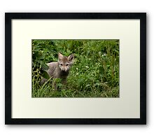 Youth in the Forest Framed Print