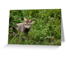 Youth in the Forest Greeting Card