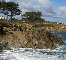Winter Surf II - Pacific Grove, CA by JimPavelle