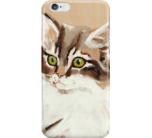 Great Cat Hero Whiskers iPhone Case/Skin