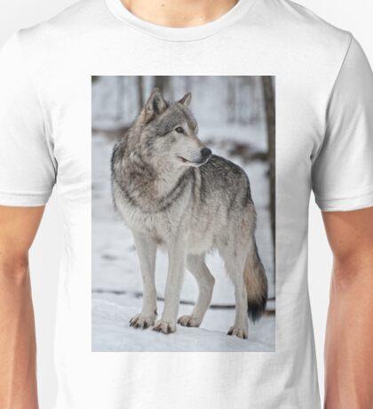 Silent Moment Unisex T-Shirt