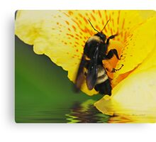 Love Thoses FLowers Canvas Print
