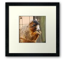Yum Yum Yummy Framed Print