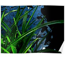 Abstract - Plant, Water and Light Poster
