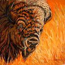 Where The Buffalo Roam by Susan Bergstrom