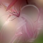 Leaning in for the Caress by enchantedImages