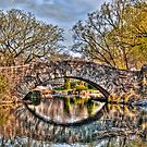 Gaptow Bridge Central Park in the Morning (HDR) by Dave Bledsoe