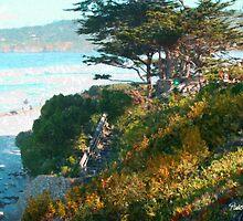 Beach Staircase - Carmel, CA by JimPavelle