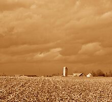 Sepia Cloudscape and Field by mltrue