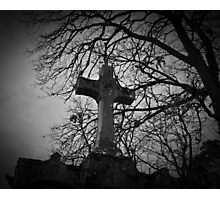 sheltered grave in black and white Photographic Print