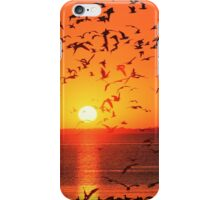 GULLS AT SUNSET iPhone Case/Skin